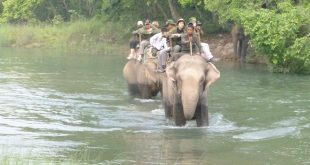 Bardia Jungle Safari
